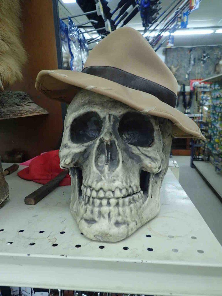 A skull wearing a hat